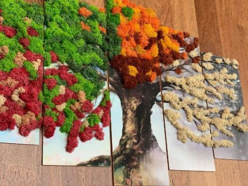 Tablou cu licheni cadou deosebit
