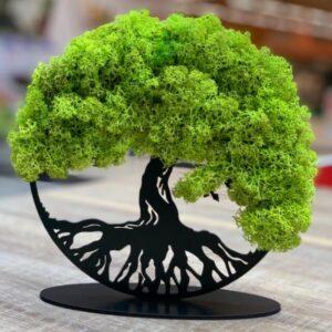 Tablou-copacul-vietii-cu-licheni-stabilizati-cadou-nasi-cadou-1-8-martie-cadou-deosebit-cadou-personalizat-cadou-special