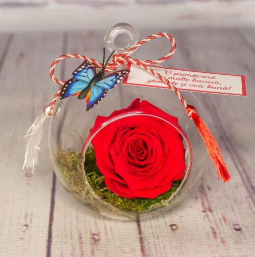 martisor-cadou-special-8-martie-ziua-femeii-trandafir-rosu-criogenat