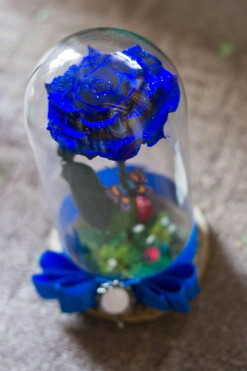 trandafir-criogenat-in-cupola-alabstru