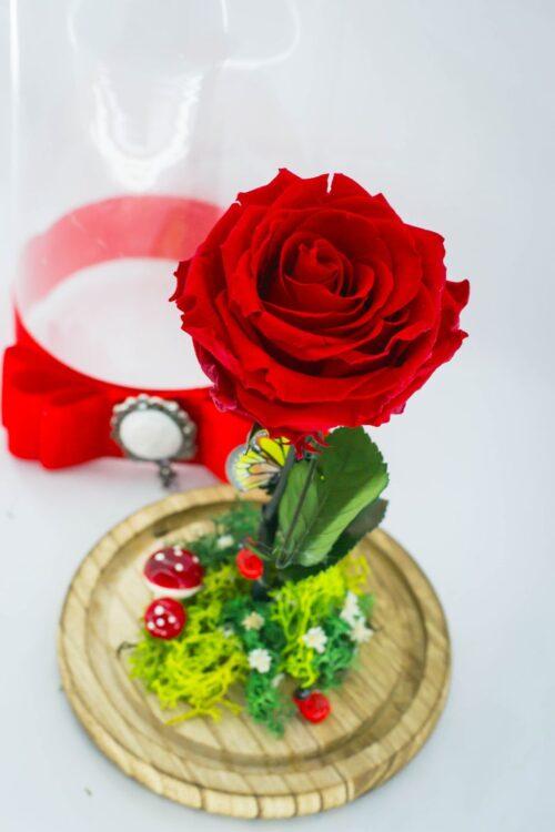 trandafir-in-cupola-detaliu