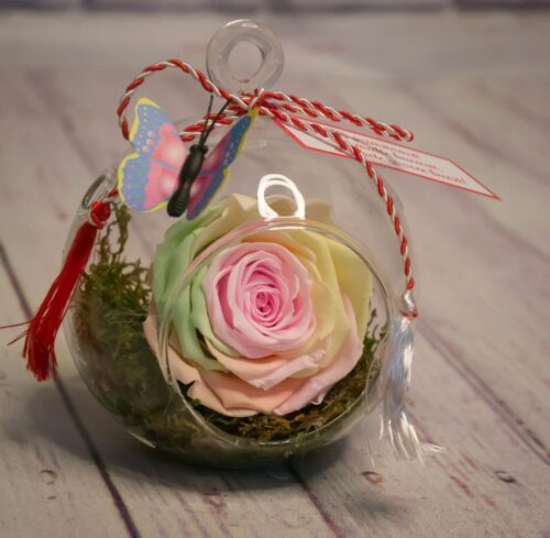 trandafiri-criogenati-curcubeu-cadou-special-deosebit-ziua-femeii-8-martie-craciun