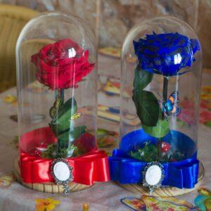trandafiri-in-cupola