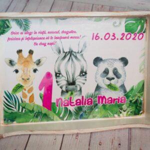 set-mot-fetita-cu-tema-safari-jungla-animalele-junglei-cu-zebra-girafa-ursulet-panda